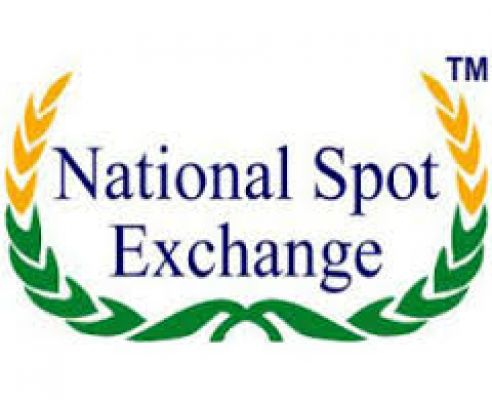 नेशनल स्पॉट एक्सचेंज लिमिटेड