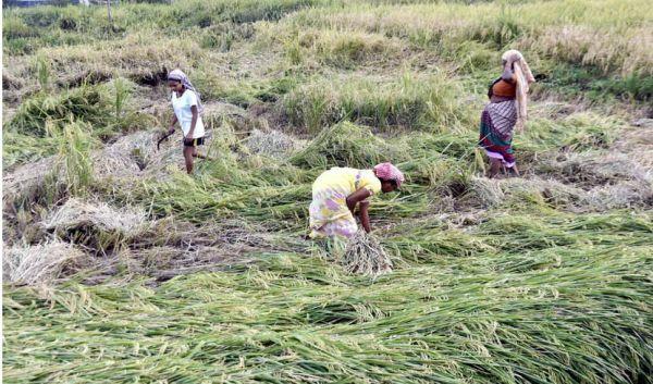 भूख से तंग है भारत