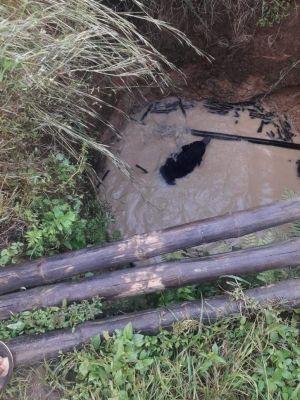 कुएं में गिरा भालू, वन विभाग ने सुरक्षित निकाला